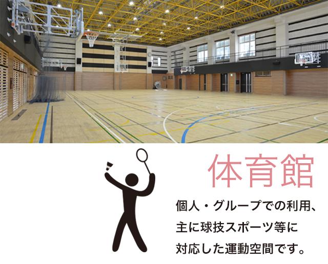 体育館:個人・グループでの利用、主に球技スポーツ等に対応した運動空間です。